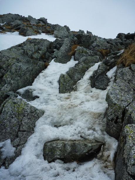 雪岩氷のミックス
