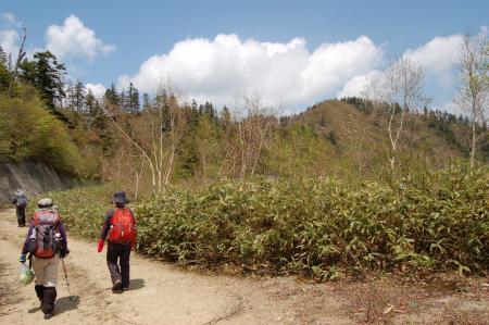 41男鹿岳への尾根