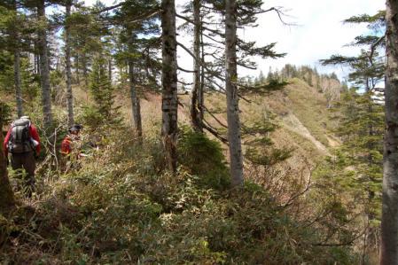 45男鹿岳への尾根