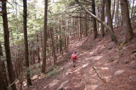 79十文字峠からの下山
