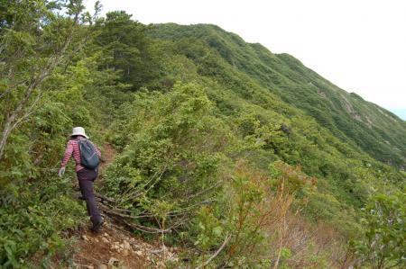 30御神楽岳への道
