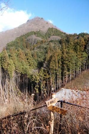 16白木山への尾根