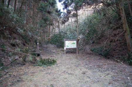 6林道終点