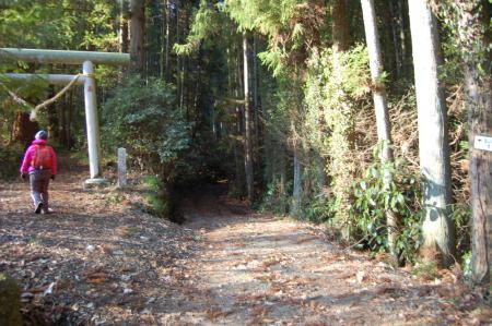 3白山神社鳥居