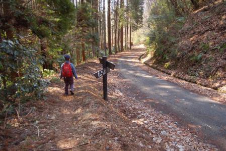 25ハイキングコース