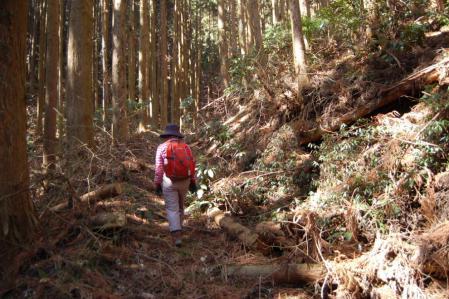 29長福山へ