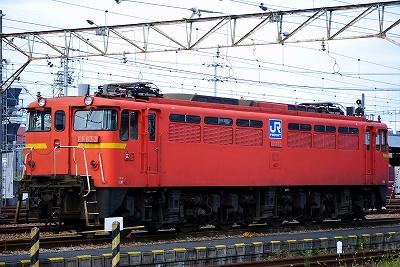20120806 (12)