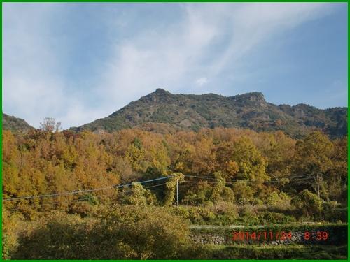 004 津波戸山②