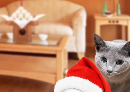 クリスマス準備12