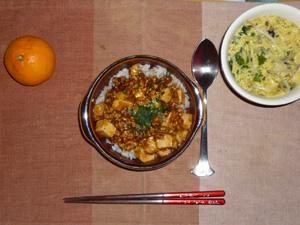 麻婆豆腐丼,もやしと玉子の中華スープ,みかん