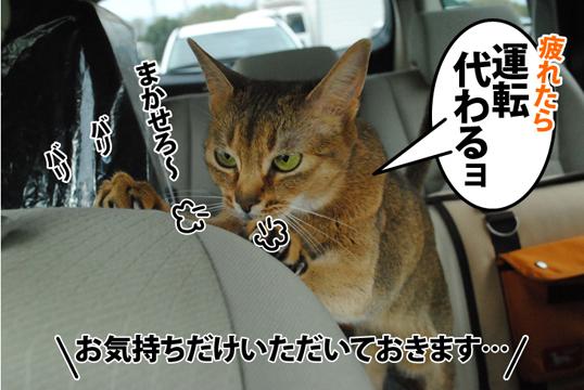 20120422_03.jpg