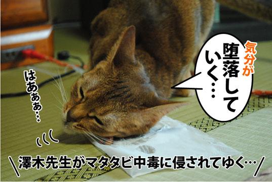 20120423_04.jpg