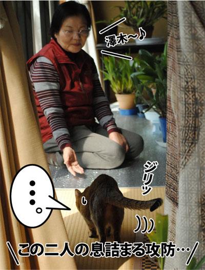 20120424_01.jpg