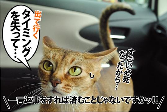 20120502_01.jpg