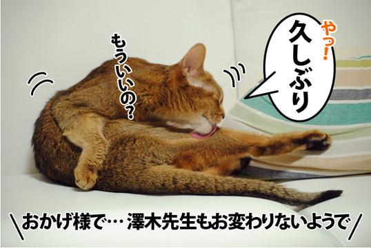 20120508_01.jpg