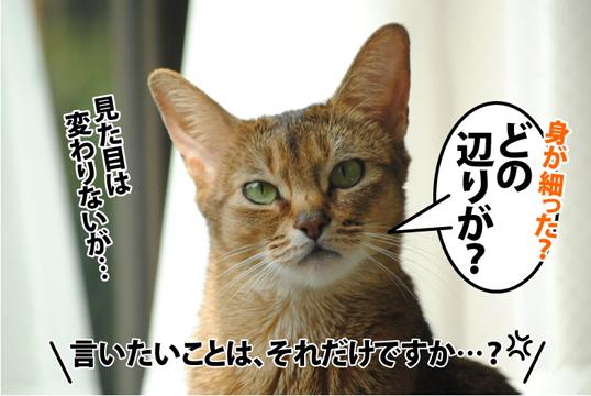 20120508_04.jpg