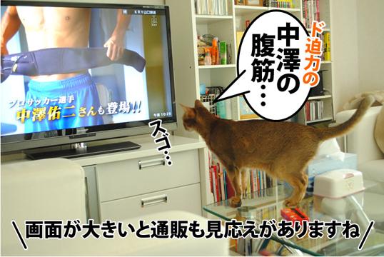 20120509_04.jpg
