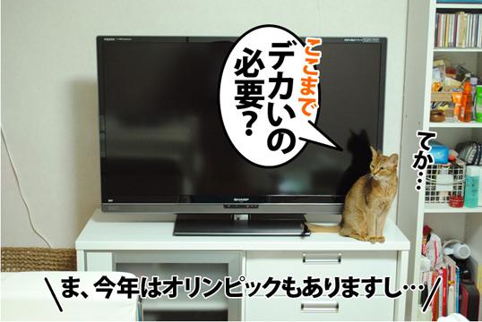 20120509_05.jpg