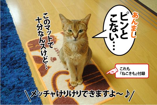 20120512_02.jpg