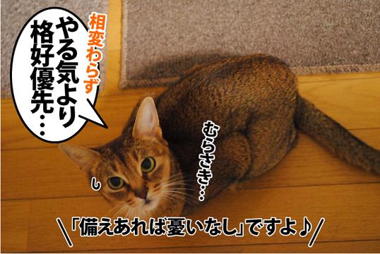 20120515_02.jpg