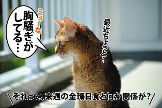 20120517_01.jpg