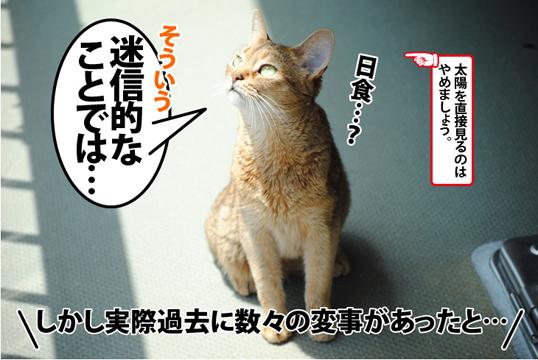 20120517_02.jpg