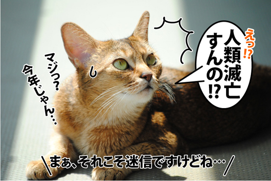 20120517_04.jpg