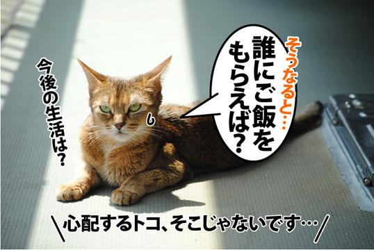 20120517_05.jpg