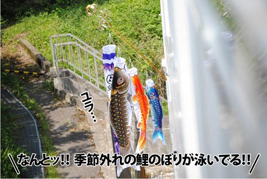 20120518_03.jpg