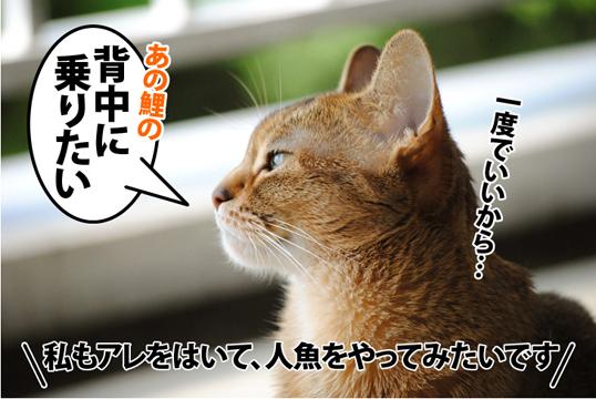 20120518_04.jpg