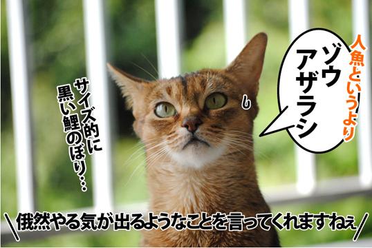20120518_05.jpg