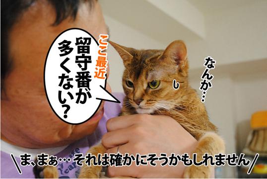 20120521_03.jpg