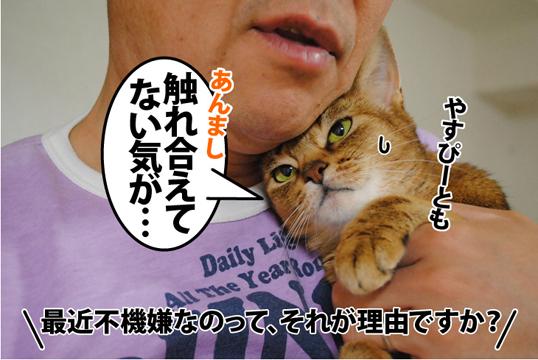 20120521_04.jpg