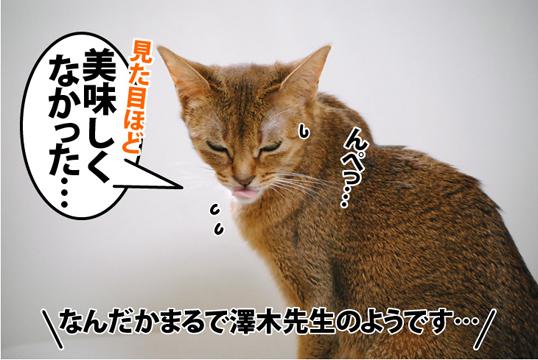 20120523_03.jpg