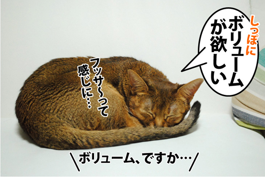20120526_01.jpg