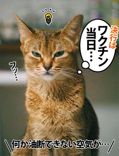 20120528_04.jpg