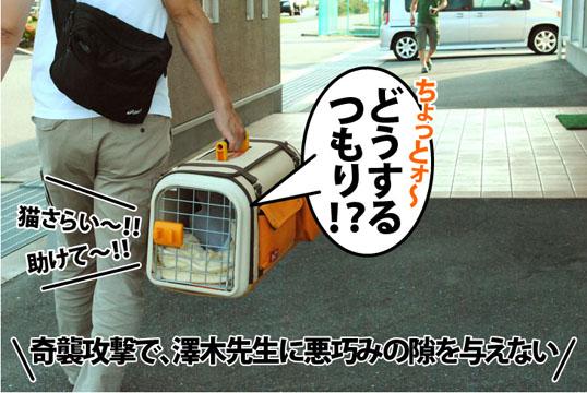 20120529_01.jpg