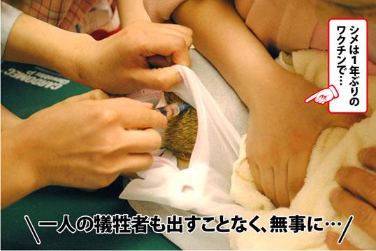 20120529_04.jpg