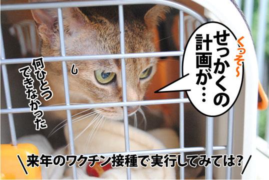 20120529_05.jpg