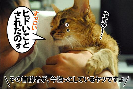 20120529_06.jpg