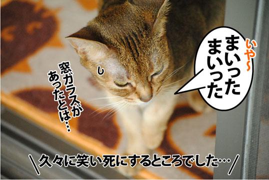 20120530_01.jpg