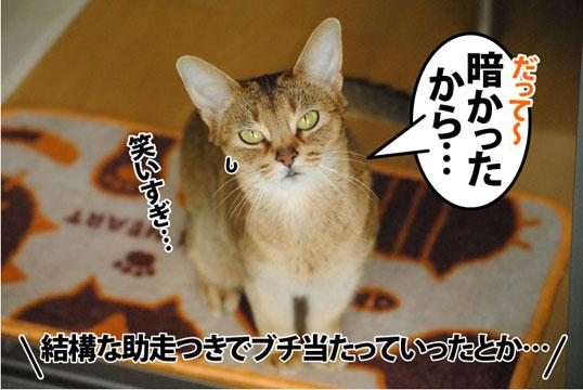 20120530_02.jpg