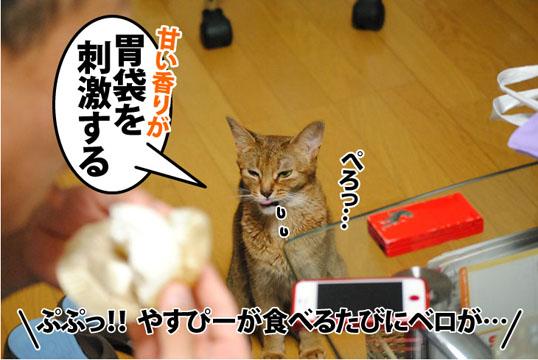 20120602_02.jpg
