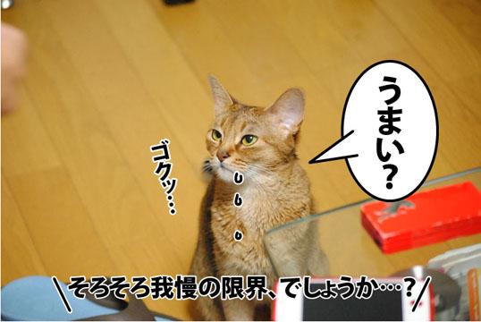 20120602_04.jpg