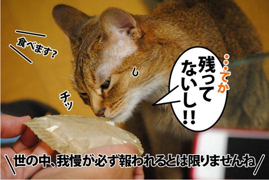 20120602_05.jpg