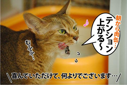 20120607_01.jpg