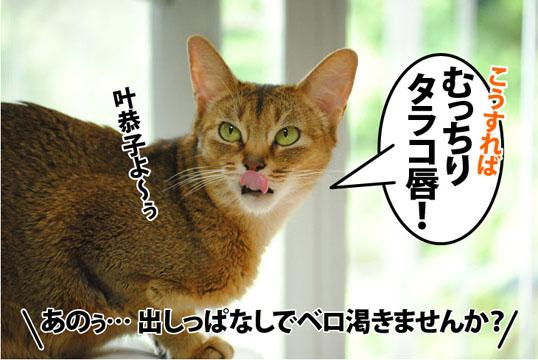 20120607_04.jpg