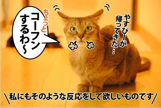 20120615_01.jpg