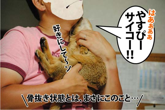 20120615_04.jpg