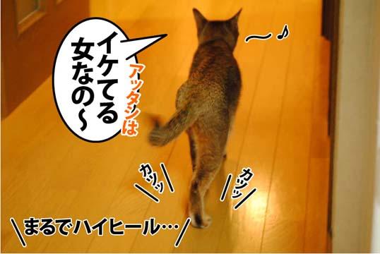 20120616_01.jpg